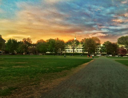 Class of 2024 Early Admission Rates Across Ivy League | Ivy Coach
